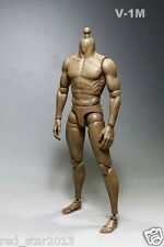 1/6 Scale 12Inch Male Muscle Body Action Figure Can Fit Hot Toys Head V-1M