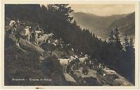 CPA Suisse Zurich Troupeau de chèvres