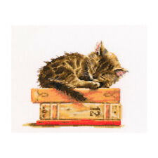 Counted Cross Stitch Kit RTO - Cat's dream