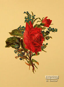 Victorian Floral III (: Art Print of Vintage Art :) (9 x 12)