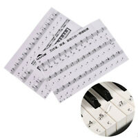 Keyboard Sticker Transparent Piano Keyboard Sticker Electronic Keyboard 88 KeyJR