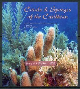 Antigua & Barbuda 2018 MNH Corals & Sponges Pillar Coral 1v S/S Marine Stamps