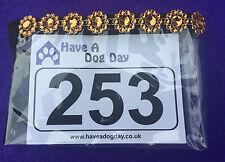 Dog Show Exhibitor Ring Number Holder Armband - GOLD/ORANGE DAISY Bling Sparkles
