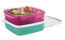 Tupperware Lunch-It Divided Lunch Containers 2-piece Set - NEW!