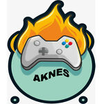 Aknes-team
