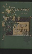 Flowers of the Field And the Forest (1882 First) (From Original Water-Color...)