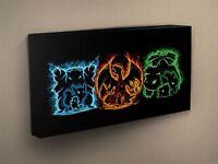 Pokemon Elements  Canvas Art Print #005446