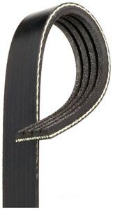 Serpentine Belt   Gates   K040305RPM