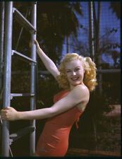 June Haver stunning original 1940's 5x4 color photo transparency swimsuit pin-up