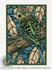 © ART  Australian Wildlife Green Budgerigar Budgie Original BIRD Artist Print Di