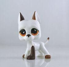Littlest Pet DANE Brown Dog Child Girl Figure Toy Loose Cute LPS963