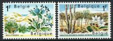 BELGIUM MNH 1967 SG2009/10 Nature Conservation