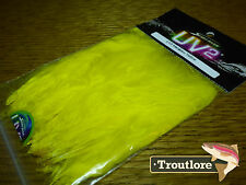 SPIRIT RIVER UV2 LEMON YELLOW MARABOU QUILLS STRUNG - NEW FLY TYING FEATHERS