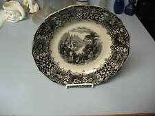 Lovely Antique 1850 Rare Black Mulberry Plate, PERU, Holdcroft, England