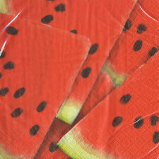 WATERMELON PICNIC SMALL NAPKINS (16) ~ Birthday Party Supplies Beverage Cake Red