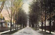 Forest Ontario Canada Prince Street Antique Postcard J50291