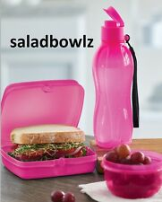 TUPPERWARE ELECTRIC PINK LUNCH SET Sandwich Keeper Small Eco Snack Cup! fREEsHIP