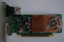 NVIDIA GEFORCE GT610 GF119 PCI-EX16 HDMI/DVI/VGA 1GB PHYSICAL MEMORY1GB VIRTUAL