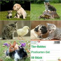 50 Postkarten TIER-BABIES: 5 Motive á 10 St. Hund Katze Schildkröte Kaninchen