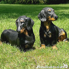More details for two large dachshund lifelike ornament figurines sausage dog lover gift memorial