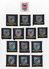 SCOUTS OF BRITISH / UNITED KINGDOM - UK SCOUT OXFORDSHIRE COUNTY BADGE (14 VAR)