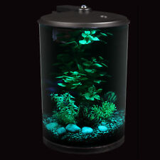 Small Living Room Aquarium Beta Fish Kit With Changing Led Lighting Filtration