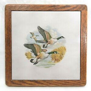 Vintage Mallard Duck Tile Trivet Wall Hanging Wooden Frame Mid Century Country