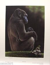 "Glenn OLSON ""Sanctuary"" Mint LTD art print Certificate COA Gorilla & baby"