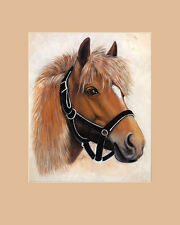 S. Poorter Portrait Pferd Poster Kunstdruck Bild 50x40cm - Kostenloser Versand