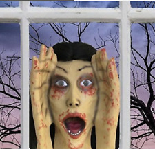 Scary Peeper SCREAMING BANSHEE Motion Activated Halloween Prank Decoration NIB