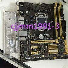 ASUS H81M-K Motherboard Intel H81 LGA 1150 Micro ATX DDR3 SATA3.0 C1Y4