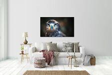Wandtattoo Wandsticker Aufkleber Adler Grösse: 120 x 70 cm