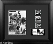Film Cell Genuine 35mm Framed Matted The Creature from the Black Lagoon USFC2422