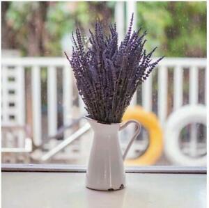 Natural Dried Lavender Flower Stem Bunch