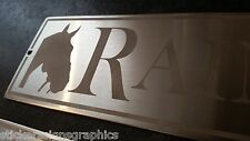 Sandblasted Stainless SteelStable Door Horse Name Plaque Plate Sign for yard