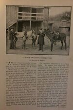 1899 Horse Swapping Convention in Georgia illustrated