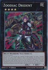 Effect Secret Rare Individual Yu-Gi-Oh! Cards