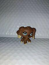 The Littlest Pet Shop brown star eyes Cocker Spaniel #960 Dog