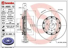Disc Brake Rotor-Premium OE Equivalent Rotor Front Left Brembo 09.A665.13