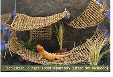 "Lizard Lounger, 100% Natural Seagrass Fibers For Anoles, Bearded Dragon 17""x 20"""