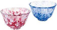 Tsugaru Vidro Sake cup set Sakura fubuki Iwashimizu w/Gift box Japan Tracking