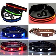 Hundegröße XS Leucht -/Sicherheitshalsbänder
