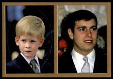 Panini The Royal Family 1991 - Prince Harry & The Duke of York no.207