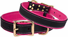 Leather Dog Collar Brass Buckle Soft Padded Pink Purple Green Red Blue S M L XL