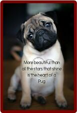Dog Humor The Heart Of A  Pug Refrigerator Magnet