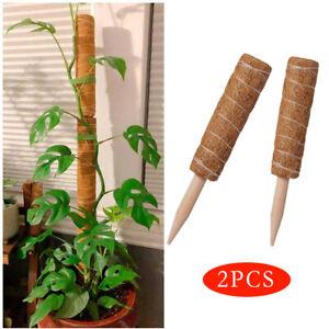 2x Pflanzstab Kokos Stab Pflanzen Rankstab Stäbe für Zimmerpflanzen Kletterhilfe