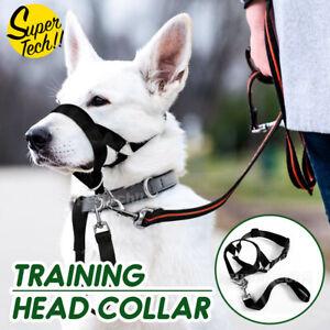 Dog Training Head Collar Halter Stop Pulling Training Tool Harness Strap Leader
