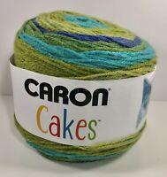 NEW Caron Cakes BLUEBERRY KIWI Smoke Free Home Worsted Yarn Colorful (4) Medium