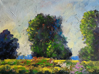 sunny meadow beautiful impressionist original painting landscape Semberecki