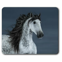 Computer Mouse Mat - Grey Andalusian Horse Office Gift #12556